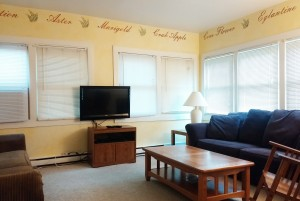 "Sun room with queen size fold-out sofa and 37"" LCD TV, Bluray DVD"